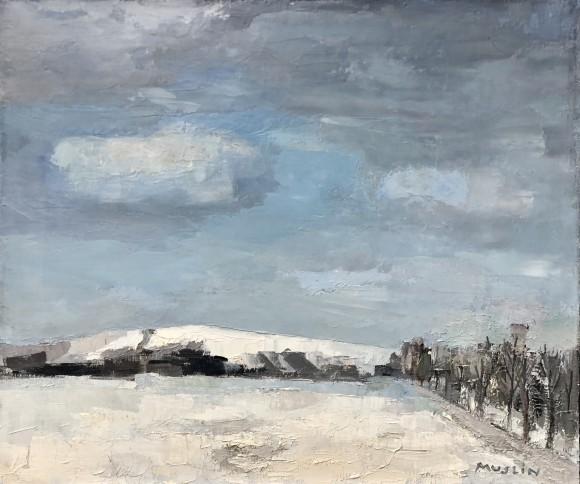 Alsatian Snow landscape
